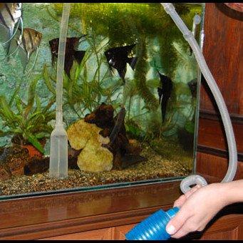 как сифонить грунт в аквариуме видеоурок