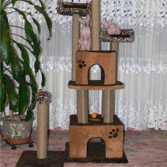 Как сделать домик для кошек фото 626