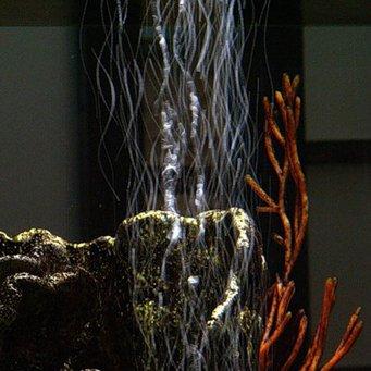 Аэраторы для аквариумов своими руками