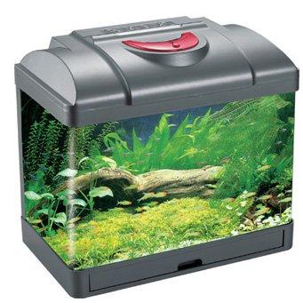 Что такое донный фильтр для аквариума своими руками фото 304