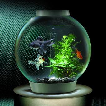Фильтры для круглых аквариумов своими руками