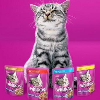 Корм для кота хороший недорогой