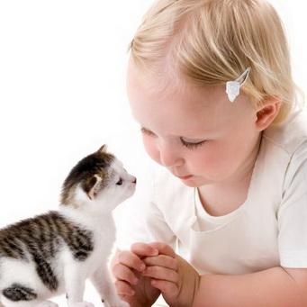 аллергия на шерсть животных симптомы фото