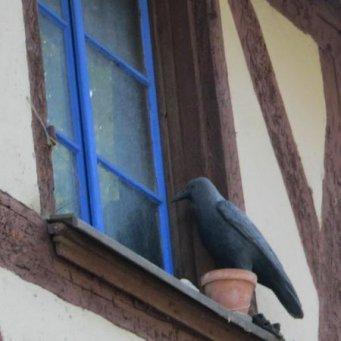 133Электронный отпугиватель птиц