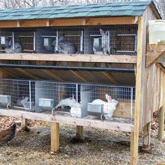 Построить сарай для животных
