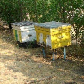 Домик для пчел как сделать 90