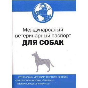 """Террористы """"ЛНР"""" начали выдавать свои """"паспорта"""" - Цензор.НЕТ 7773"""