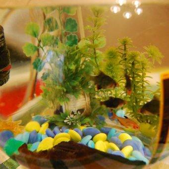 Донный фильтр в аквариум своими руками