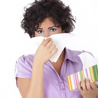есть ли аллергия на шарпея