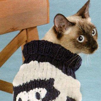 как связать кошке жилетку крючком с фото очень покладистая