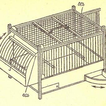 Как сделать клетку своими руками для канареек