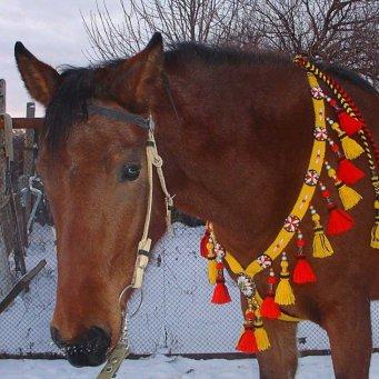 Как сделать украшения лошади своими руками