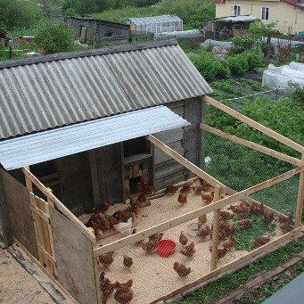 Вольер для куриц своими руками