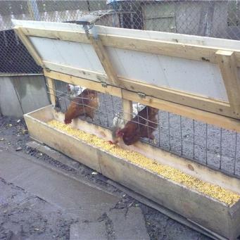 Кормушка для куриц своими руками фото оригинальные