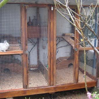 Вольеры для кролика своими руками 36