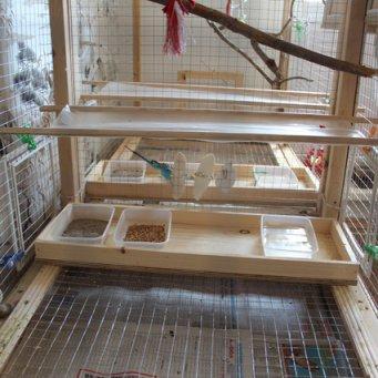 Клетка для больших попугаев своими руками с фото фото 874