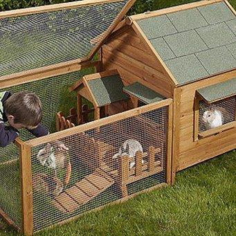 Как построить сарай для кроликов и кур своими руками