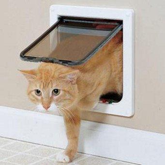 Туалет для кота своими руками