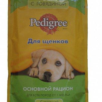 как выявить аллергию на конкретную собаку